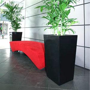 bamboo-x-2-in-black-wedge